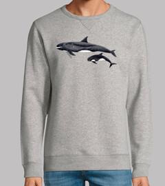 Orca pigmea (Feresa attenuata)