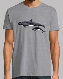 orque pygmée (feresa attenuata) chemise homme