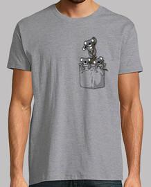 orsi tasca koala