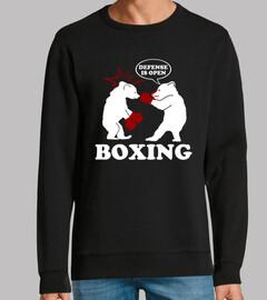 orso di boxe