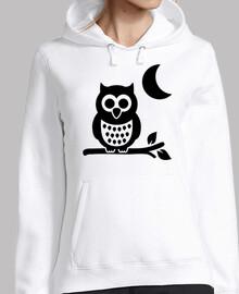 owl moon night