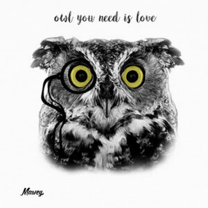 Camisetas OWL YOU NEED IS LOVE