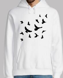 pájaros voladores negros