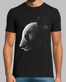 panda nell'ombra