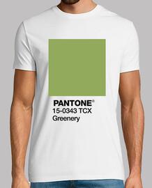 Pantone 15-0343 TCX