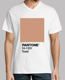 Pantone 16-1331 TPX