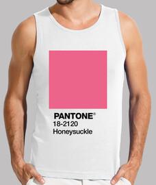 Pantone 18-2120 TCX