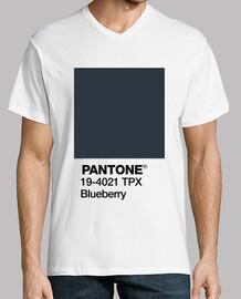 Pantone 19-4021 TPX