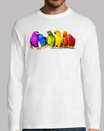 pappagalli_colorati