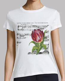 partitions et tulipes / musique / fleur