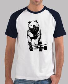 patineur chien