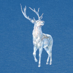 Camisetas Patronus Harry