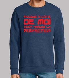 perfecto / perfecta / perfecta