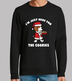 Perro Beagle Cookies Navidad