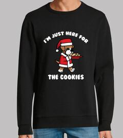 Perro Boxer Cookies Navidad