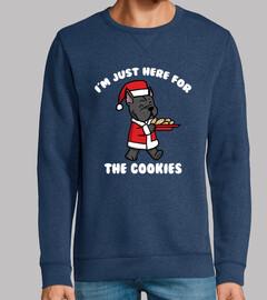 Perro Bulldog Francés Cookies Navidad