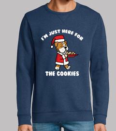 Perro Bulldog Inglés Cookies Navidad