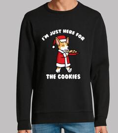 Perro Corgi Cookies Navidad