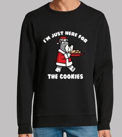 Perro Schnauzer Cookies Navidad