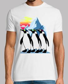 pinguino estate