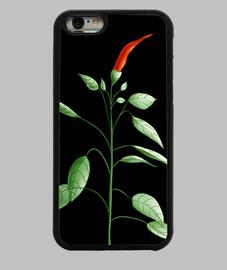 planta de ají picante dibujo botánico