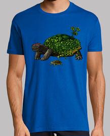 plante de tortue