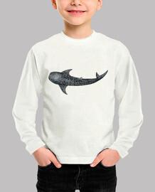 plongeurs de requin baleine