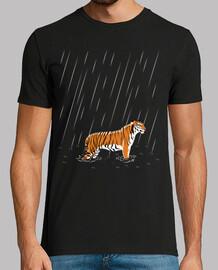 pluie de tigre