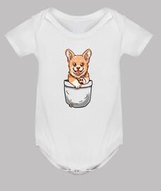 pocket corgi puppy