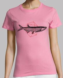 poisson en géométrie ii