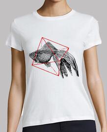 poisson en géométrie iii