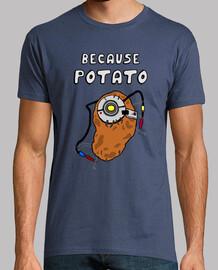 Portal Potato