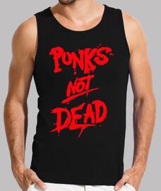 Punks not dead Graffiti
