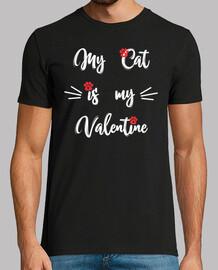 Quiero mucho a mi gato.
