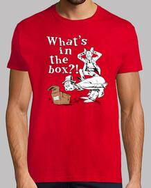 qu'y a-t-il dans la boite?!
