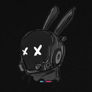 Camisetas Rabbit