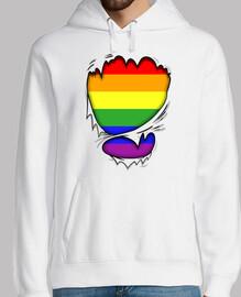 Rasgado Bandera Gay
