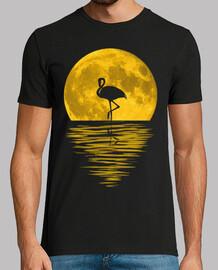 Reflejo Luna llena y flamenco