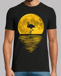 réflexion pleine lune et flamenco