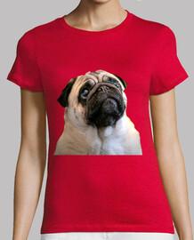 regular cut t shirt and carugino pug dog face design