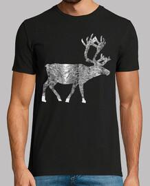 reindeer 02