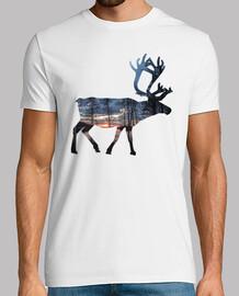 reindeer 03