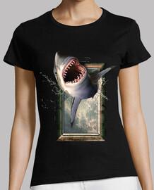 requin saut requins requins