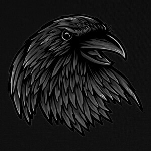 Camisetas Rise Of The Raven