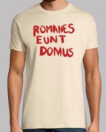 Romanes Eunt Domus (Life of Brian)