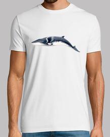 Rorcual aliblanco camiseta hombre