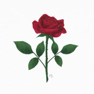 Camisetas Rosa