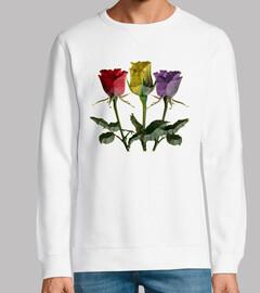 Rosas Republicanas