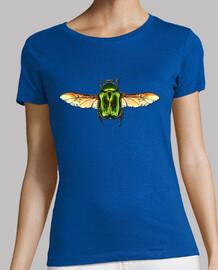 Rose chafer beetle-Escarabajo abejorro de la rosa