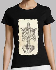Sceleti Humani